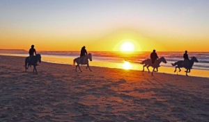 820x480xhorseback-riding-beach-820x480.jpg.pagespeed.ic_.8hPeS_cLiT8lChRKCgv6